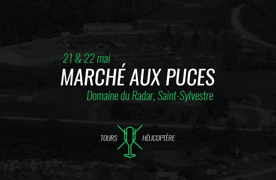 marche-puces-helicoptere-02